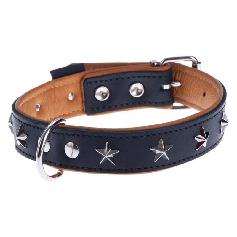 El collar es una opción cuando tenemos que elegir entre collar o arnes para pasear a nuestro perro